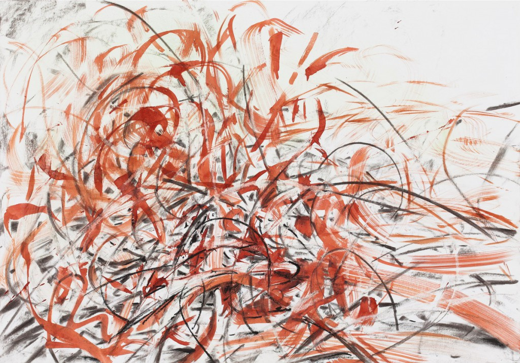 o.T., 2015, Tusche, Kohle und Kreide auf Papier, 70,2 x 100,5 cm | untitled, 2015, ink, charcoal and crayon on paper, 70,2 x 100,5 cm