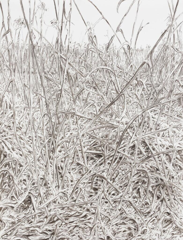 o.T., 2021, Kohle auf Papier, 200 x 152 cm   untitled, 2021, charcoal on paper, 200 x 152 cm