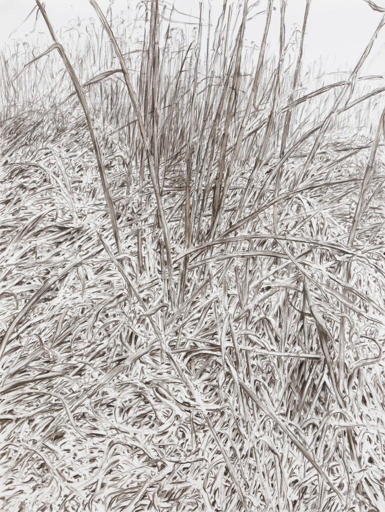 o.T., 2021, Kohle auf Papier, 200 x 150,5 cm   untitled, 2021, charcoal on paper, 200 x 150,5 cm